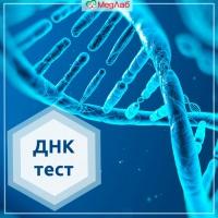 Как проводят ДНК тест на отцовство?